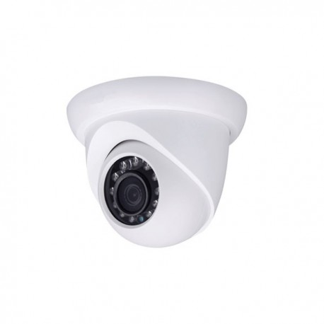 3 Megapixel HD Network Small IR WDR Eyeball